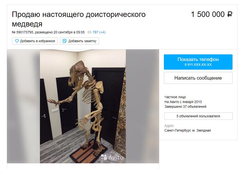 a8bc9028fbaef Поисковые работы заняли 5 лет. В профиле автора медвежий скелет соседствует  с такими товарами, как подшипники, джинсы и водонагреватель.