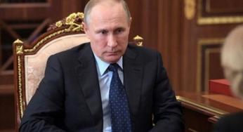 Путин заявил об успехах в росте численности амурского тигра