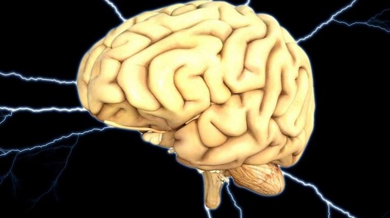 Ученые научились преобразовывать в речь сигналы мозга