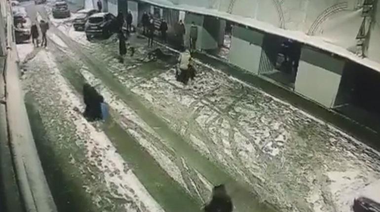 Полиция начала проверку после массового избиения у бара на Думской