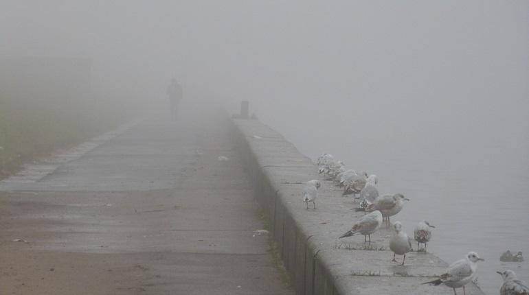 В воскресенье на Ленобласть опустится туман