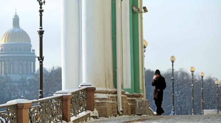 Гидрометцентр предрёк Петербургу теплую и бесснежную зиму
