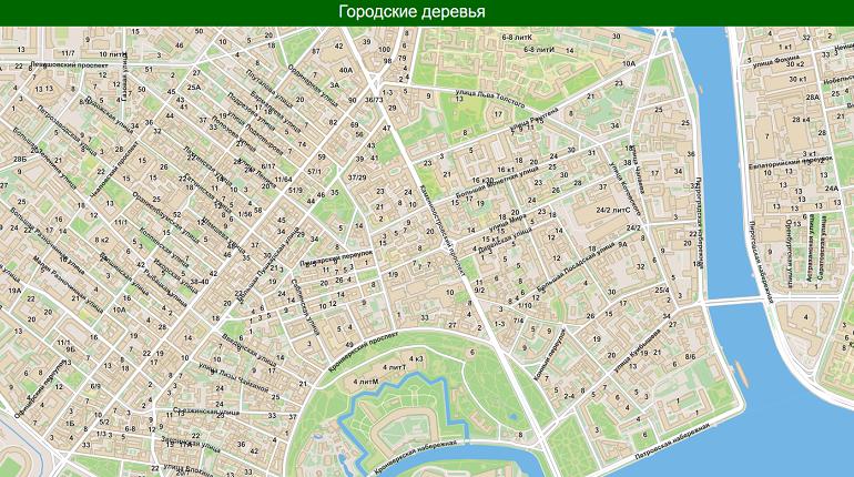 Каждое дерево Петербурга попадет на карту