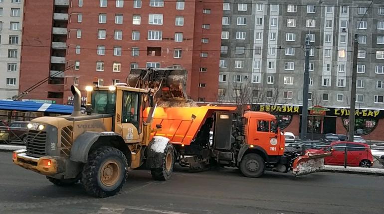В заснеженном Петербурге высыпали 40 тонн гранита