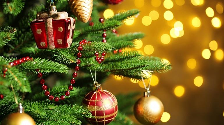 В США спилили рождественскую ель, ее вес — 14 тонн