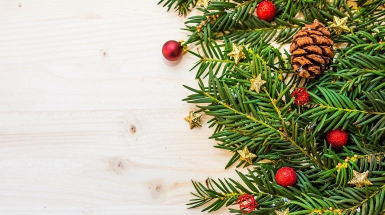 С 20 декабря в Петербурге начнут работать 39 елочных базаров