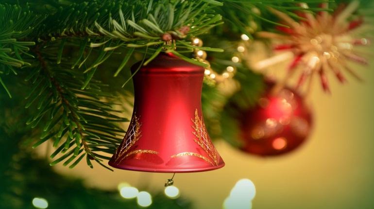 Эксперт рассказала, какую елку лучше выбрать на Новый год