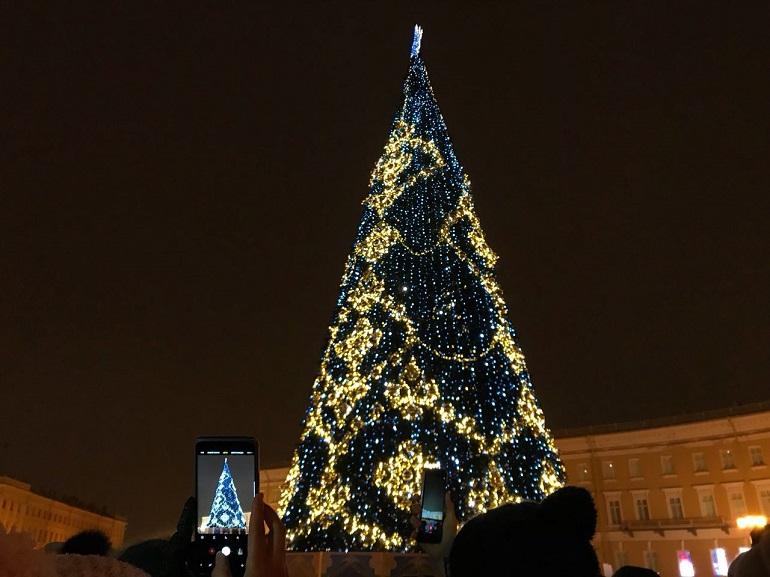 Индивидуальный предприниматель может лишить петербуржцев живой елки на Дворцовой из-за лампочек