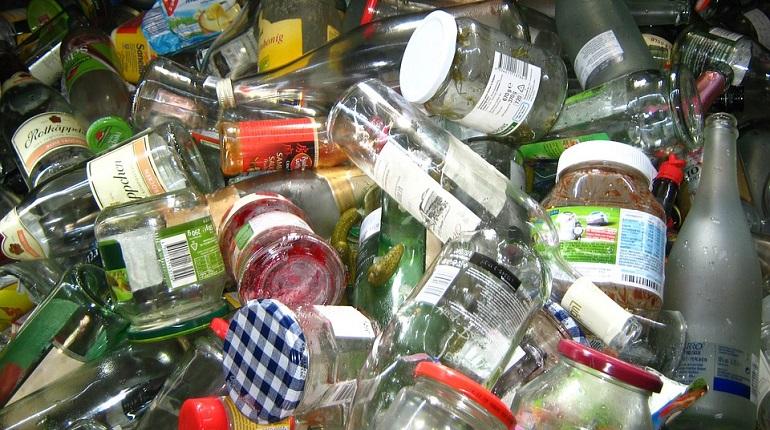 Ленобласть перейдет на раздельный сбор мусора раньше срока. Фото: pixabay.com
