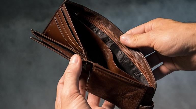 Петростат подсчитал реальные доходы петербуржцев в прошлом году. Фото: pixabay.com