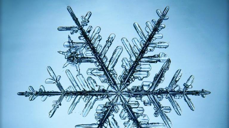 «Геометрия зимы» и «ужасный» Дисней: события 24 декабря