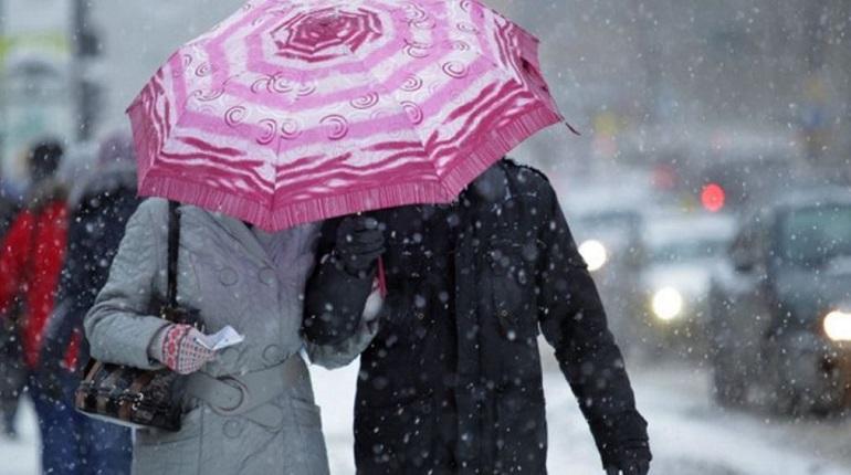 Мороз и метель придут в Ленобласть в среду