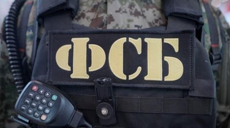ФСБ показала видео задержания готовивших теракты в Петербурге на Новый год