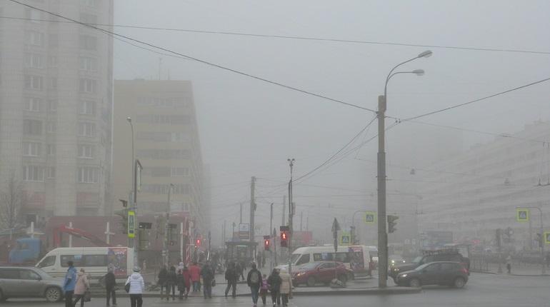 Жители Васильевского острова снова задыхаются из-за странного запаха