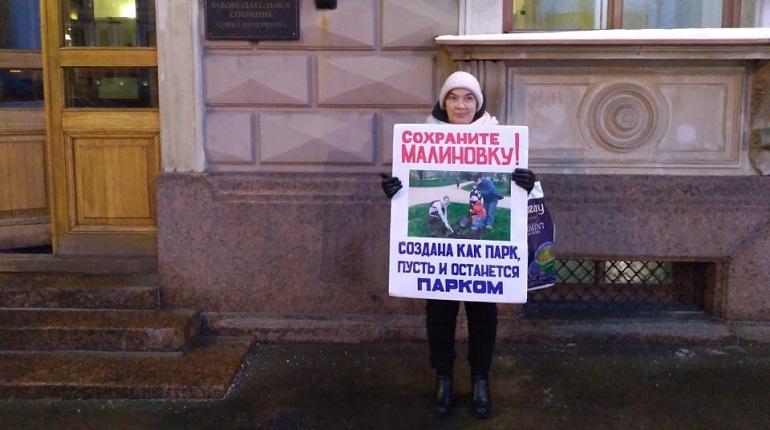 Защитница парка Малиновка проводит пикет у Заксобрания