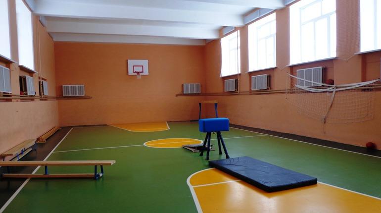 В 14 школах Ленобласти к новому учебному году отремонтируют спортзалы