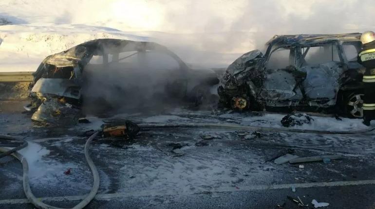 В массовом ДТП под Воронежем погибли восемь человек