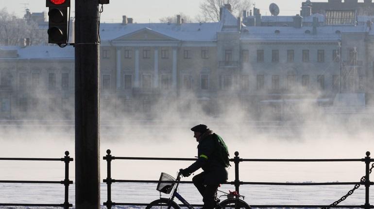 Велосветофоры в Петербурге могут поставить в 2022 году, но есть ряд проблем