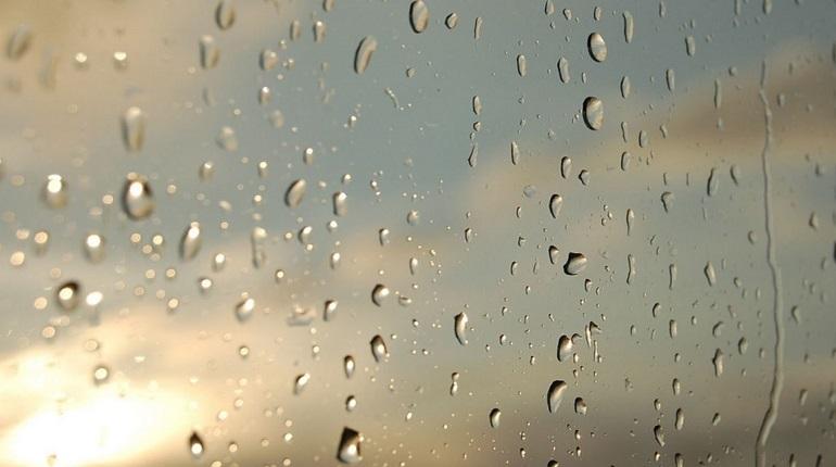 8 марта в Петербурге пойдет дождь. Фото: pixabay