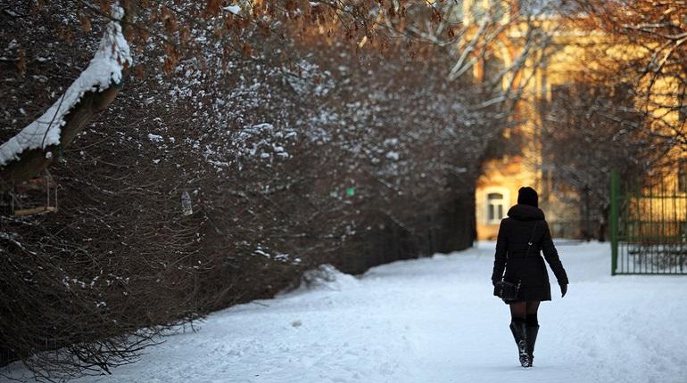 20 февраля в Петербурге: «снежные картели» и отчет главы Кронштадта
