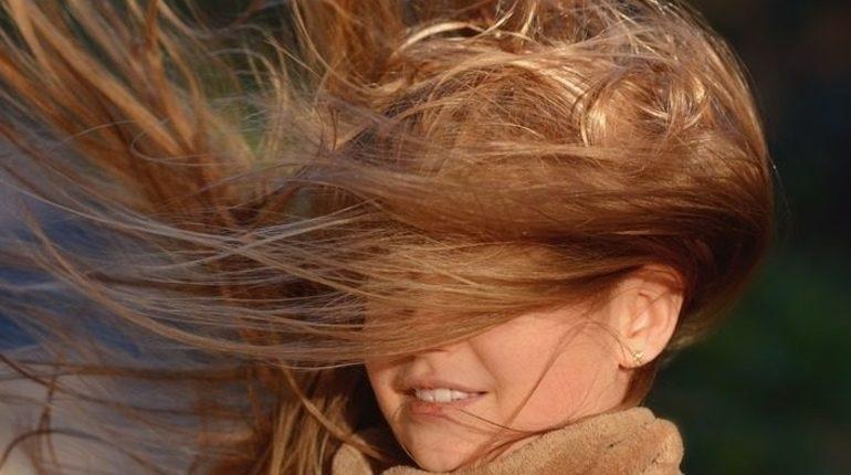 В Петербурге усилится ветер. Фото: Pixabay.com