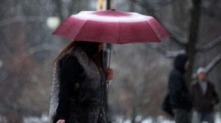 Жителей Ленобласти ждут заморозки и кратковременные дожди