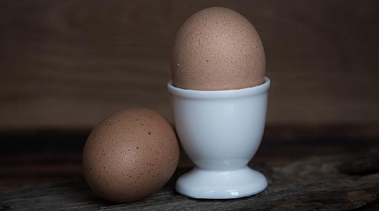 Миллион яиц проверили в порту Петербурга и отправили в ОАЭ