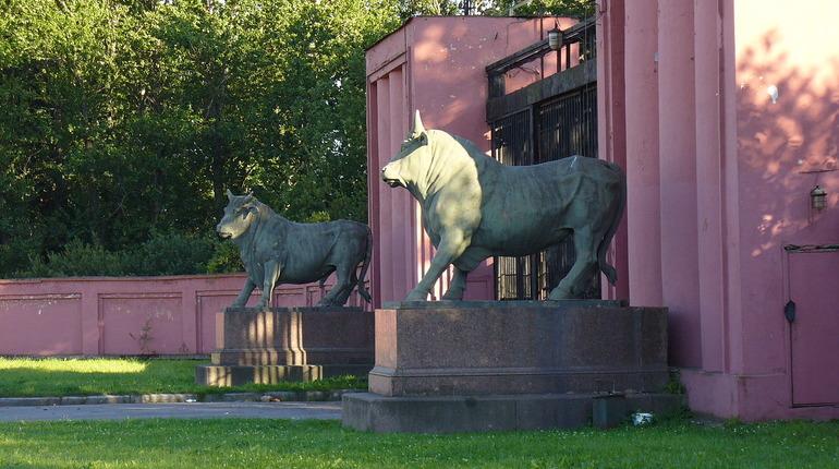 Четверть россиян верит в удачу, если потереть части памятников