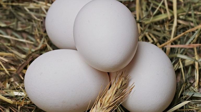Купчинская «колдунья» сняла с петербурженки порчу черным яйцом