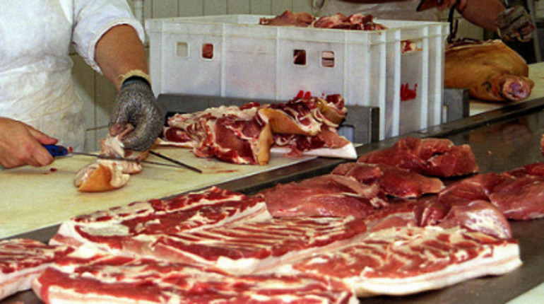 Прокуратура: мясокомбинат в Московском районе кишит крысами