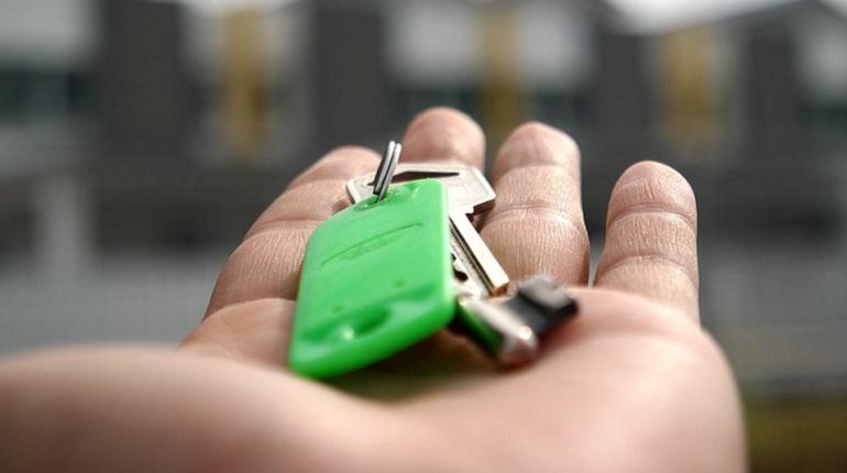 УК проверит квартиру на Кораблестроителей на наличие плесени. Фото: pixabay.com