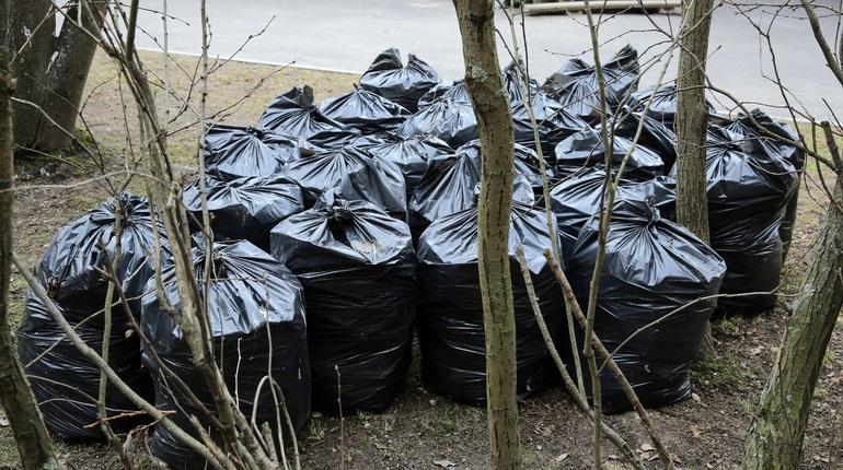Эксперты скорректируют адреса станций для сортировки отходов