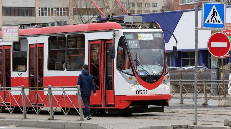 Трамвайную линию от Кудрово до Дыбенко построят за счет бюджета