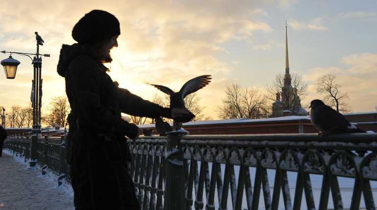 В Петербурге теплеет. Фото:  Balthoto/ Павел Долганов
