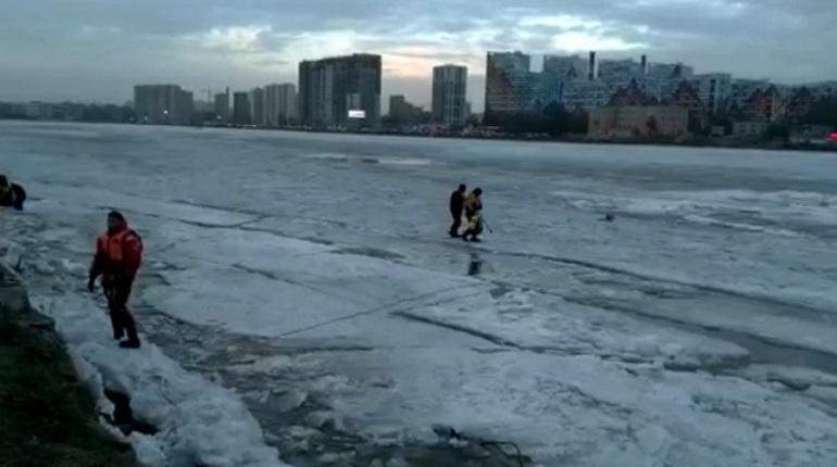 Видимость в Неве в зоне поисков мальчика не превышает 50 сантиметров
