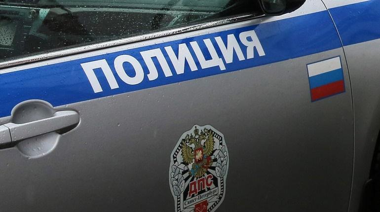 Петербуржца осудили за избиение инспектора ДПС