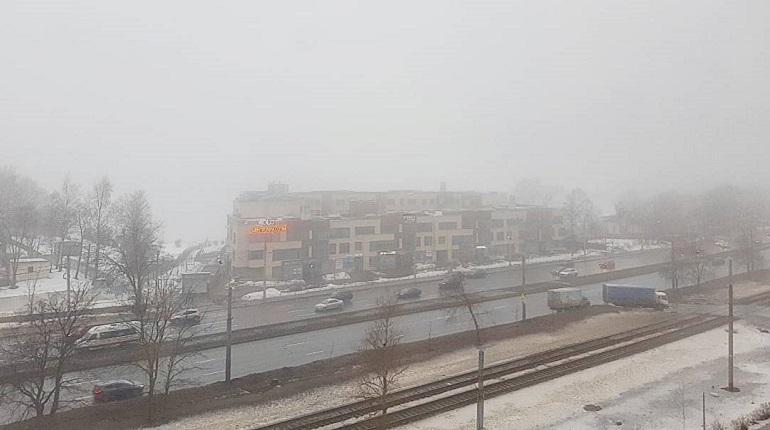 Туман, мокрый снег и дождь придут в Ленинградскую область 2 марта