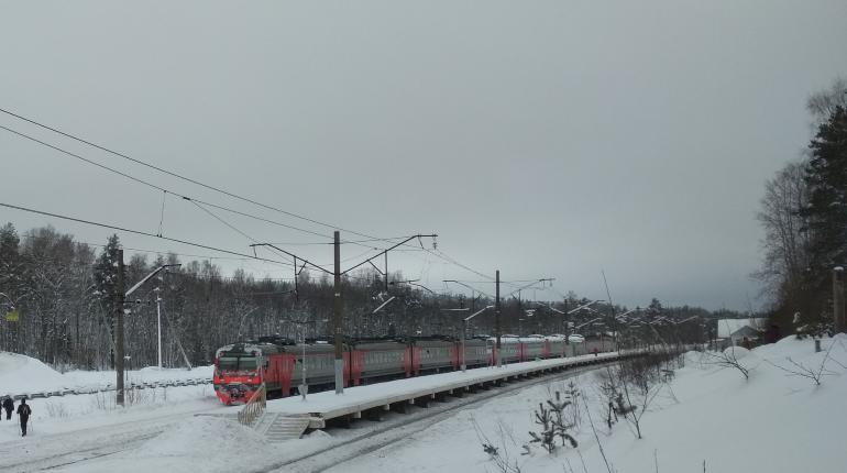 Зимы не будет. И «Лыжных стрел» в Петербурге тоже