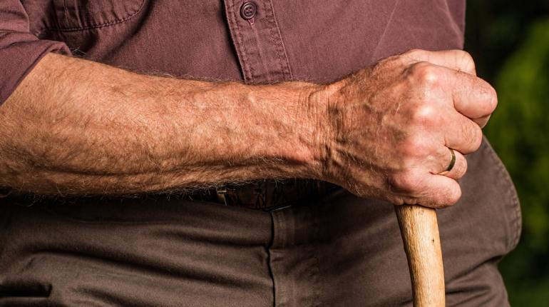 Полиция задержала предполагаемую убийцу пенсионера в Гатчине