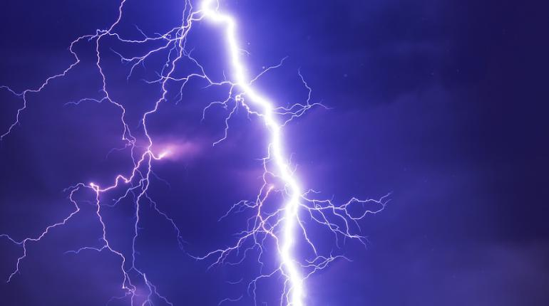 В Ломоносовском районе гастарбайтер погиб от удара молнии