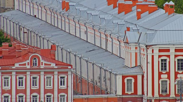 Одна из старейших кафедр СПбГУ под угрозой закрытия