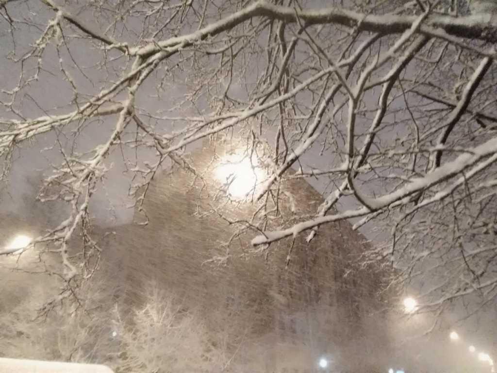Вечером в Петербурге ветер усилится до 20 м/c