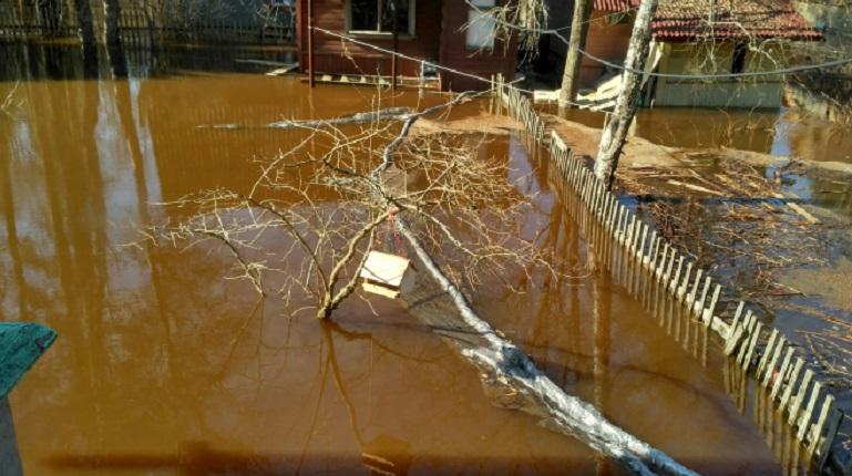 О безопасности во время паводков расскажут жителям Ленобласти. Фото: группа