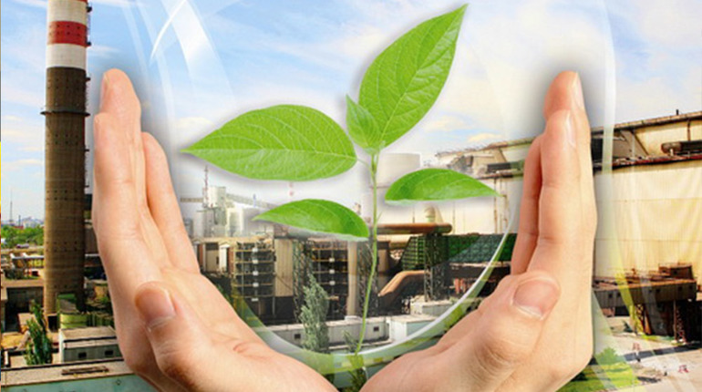 В Петербурге могут появиться научно-технические гранты в сфере природопользования. Фото: flickr.com