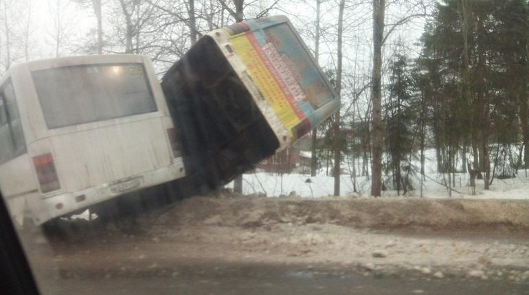 Автобусы упали в кювет на трассе Петербург-Матокса. Фото: ДТП и ЧП | Санкт-Петербург | Питер Онлайн | СПб