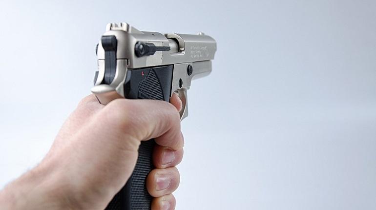 Жительница Тосно утопила пистолет во время прогулки по мосту. Фото: pixabay.com