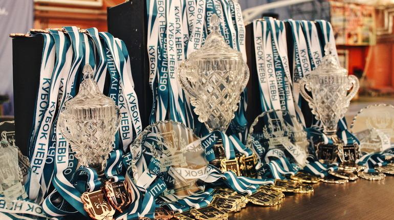 В Петербурге 9 и 10 марта пройдет Кубок Невы по тхэквондо. Фото: nevacup.ru