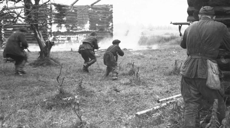 Российский историк оценил создание архива о злодеяниях нацистов под Ленинградом