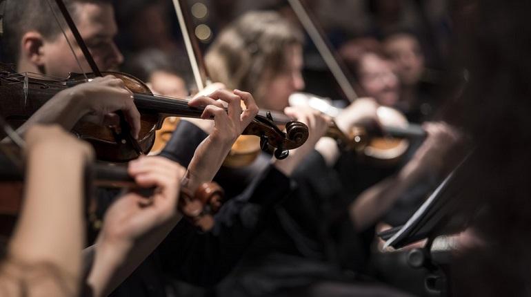 В Гатчине 8 марта пройдет концерт. Фото: unsplash.com