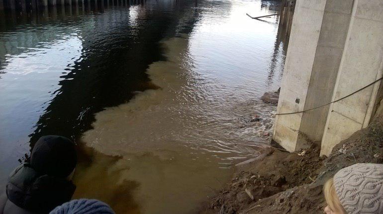 Загрязнение Обводного канала. Фото: Департамент Росприроднадзора по СЗФО